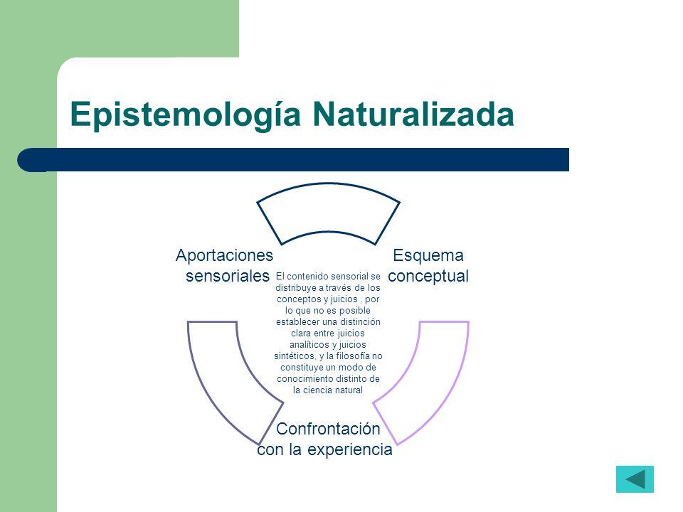 Epistemología Naturalizada El contenido sensorial se distribuye a través de los conceptos y juicios, por lo que no es posible establecer una distinció