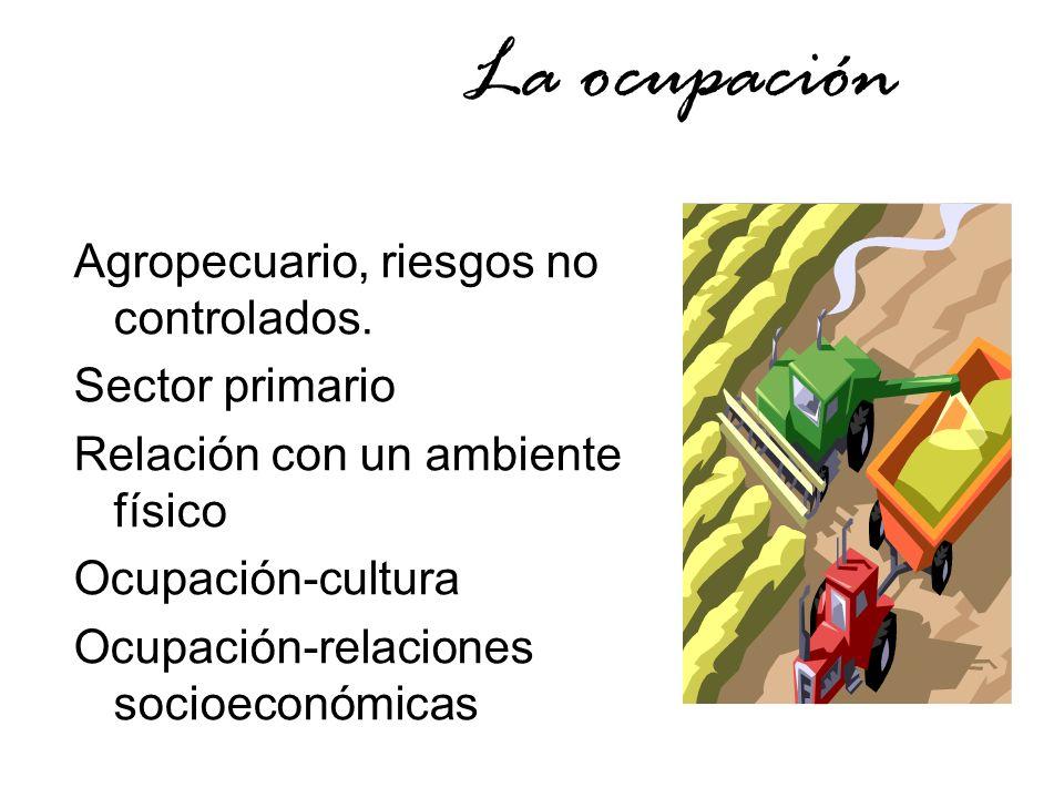 La ocupación Agropecuario, riesgos no controlados. Sector primario Relación con un ambiente físico Ocupación-cultura Ocupación-relaciones socioeconómi