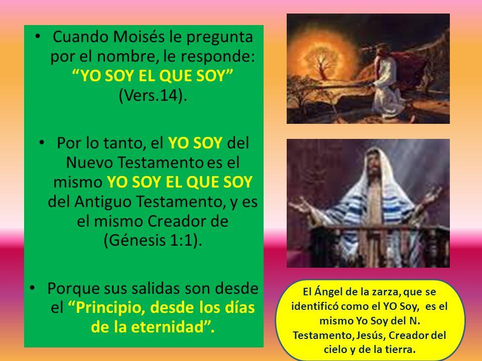 Cuando Moisés le pregunta por el nombre, le responde: YO SOY EL QUE SOY (Vers.14). Por lo tanto, el YO SOY del Nuevo Testamento es el mismo YO SOY EL