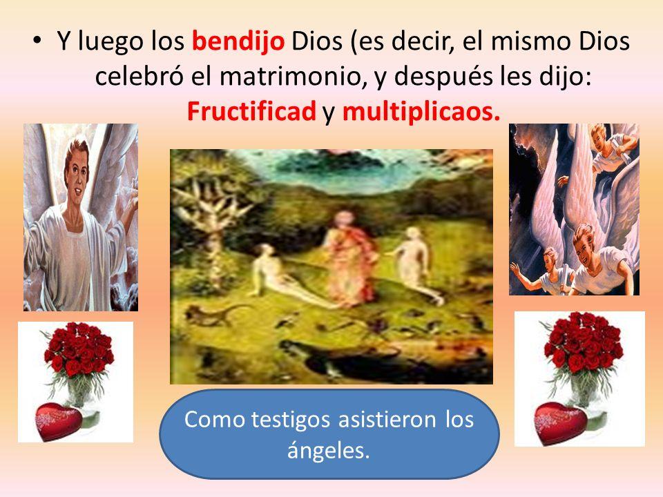 Y luego los bendijo Dios (es decir, el mismo Dios celebró el matrimonio, y después les dijo: Fructificad y multiplicaos. Como testigos asistieron los