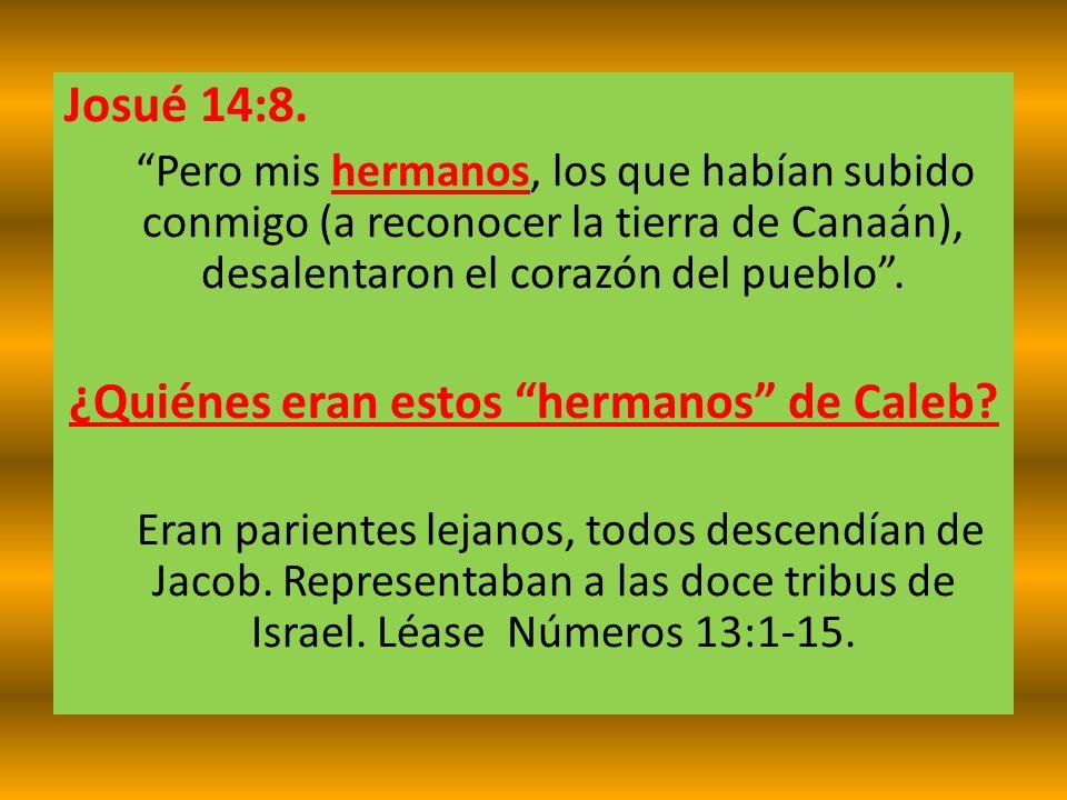 Josué 14:8. Pero mis hermanos, los que habían subido conmigo (a reconocer la tierra de Canaán), desalentaron el corazón del pueblo. ¿Quiénes eran esto