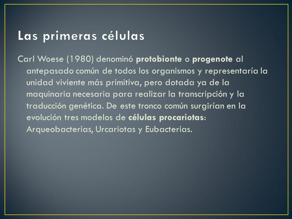 Carl Woese (1980) denominó protobionte o progenote al antepasado común de todos los organismos y representaría la unidad viviente más primitiva, pero dotada ya de la maquinaria necesaria para realizar la transcripción y la traducción genética.