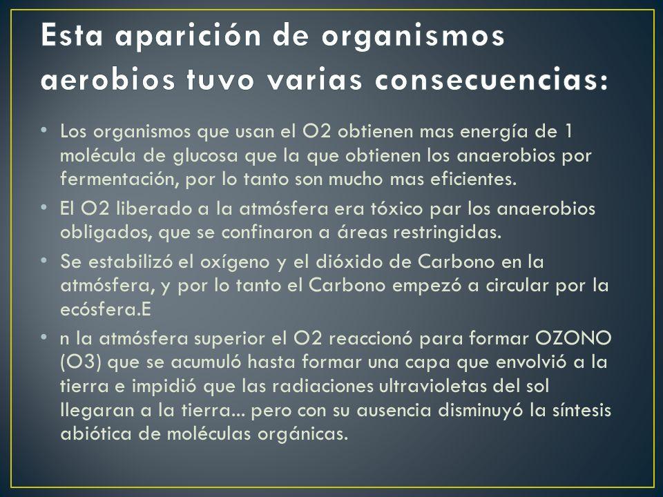 Los organismos que usan el O2 obtienen mas energía de 1 molécula de glucosa que la que obtienen los anaerobios por fermentación, por lo tanto son mucho mas eficientes.