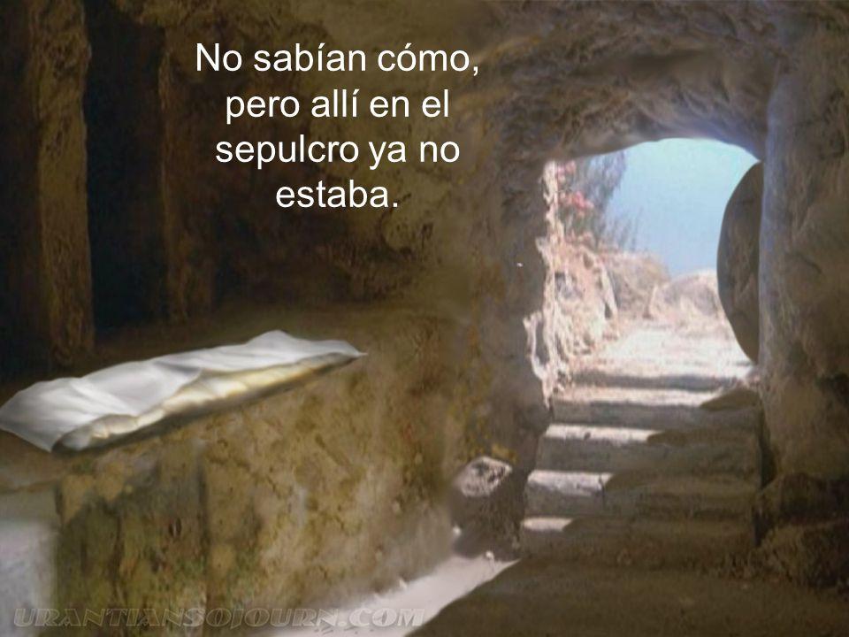 Pero alguien dio la alarma: no está ya entre los muertos, su muerte ha sido despertada, la tumba está vacía y sólo hospeda su nada.