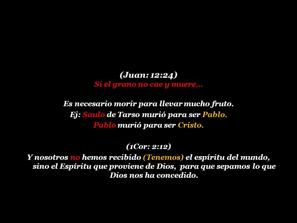 (Juan: 12:24) Si el grano no cae y muere… Es necesario morir para llevar mucho fruto. Ej: Saulo de Tarso murió para ser Pablo. Pablo murió para ser Cr
