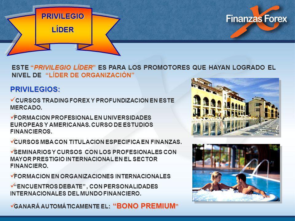 PRIVILEGIOS: CURSOS TRADING FOREX Y PROFUNDIZACION EN ESTE MERCADO. FORMACION PROFESIONAL EN UNIVERSIDADES EUROPEAS Y AMERICANAS. CURSO DE ESTUDIOS FI