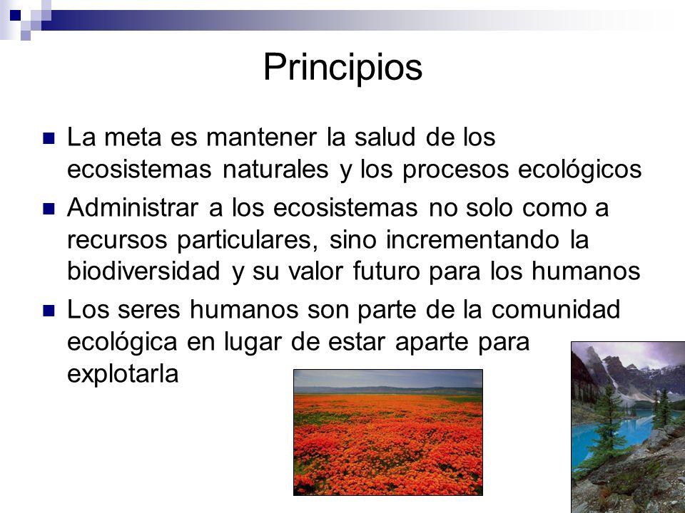 Principios La meta es mantener la salud de los ecosistemas naturales y los procesos ecológicos Administrar a los ecosistemas no solo como a recursos p