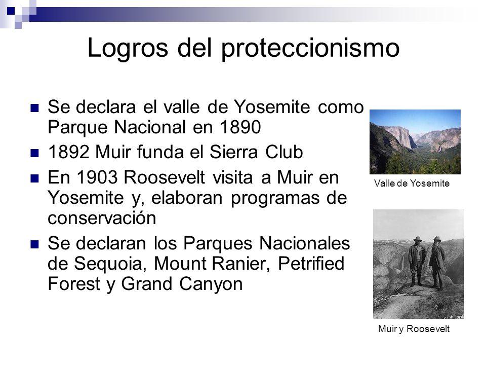 Logros del proteccionismo Se declara el valle de Yosemite como Parque Nacional en 1890 1892 Muir funda el Sierra Club En 1903 Roosevelt visita a Muir