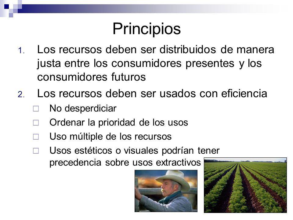 Principios 1. Los recursos deben ser distribuidos de manera justa entre los consumidores presentes y los consumidores futuros 2. Los recursos deben se