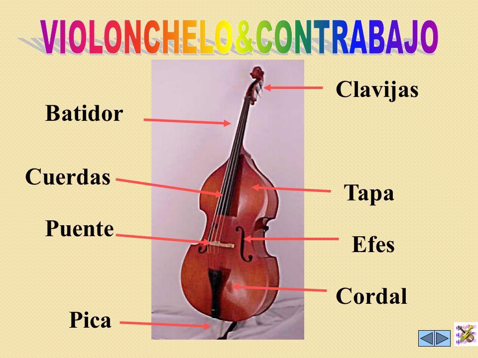 Tiene la misma forma que el violín, pero es un poco más grande y más grave. Se toca igual que el violín. LA VIOLA