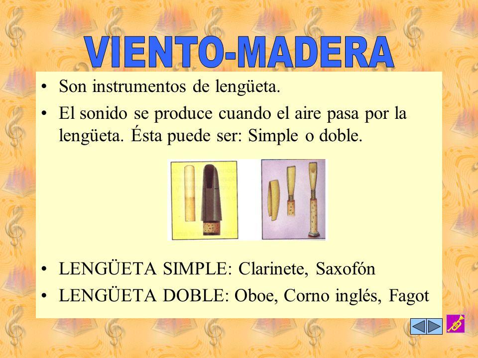 Está integrada por instrumentos que en su origen y aún en la actualidad se fabrican en el material que identifica a esta familia, la madera. Su ubicac