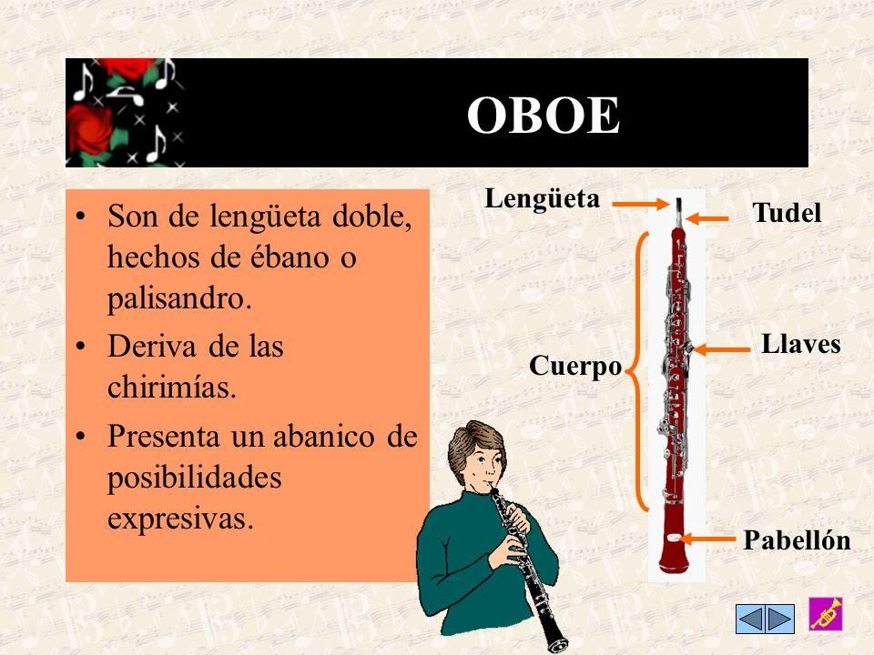 FLAUTA&FLAUTIN Existen 2 tipos: la flauta travesera y el flautín o píccolo, que es el más agudo. Están afinadas en do Cabeza Embocadura Llaves Cuerpo