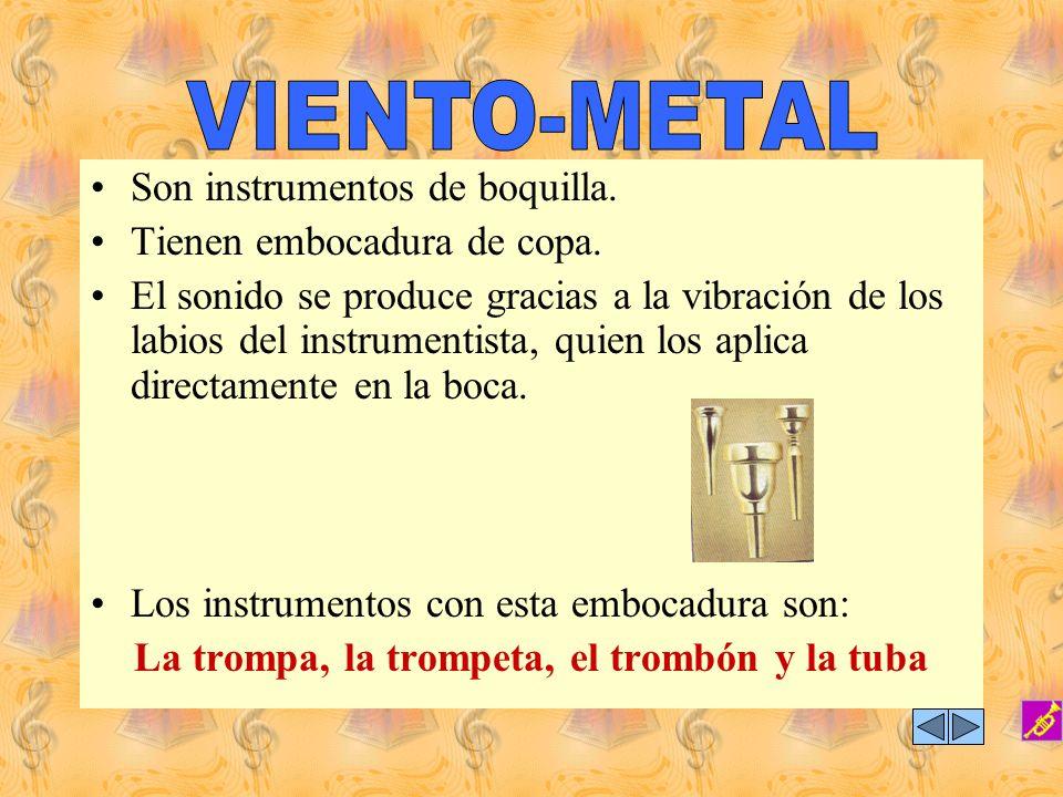 Está integrada por instrumentos que desde su origen se fabrican en el material que la identifica, el metal. Su ubicación en la orquesta está detrás de