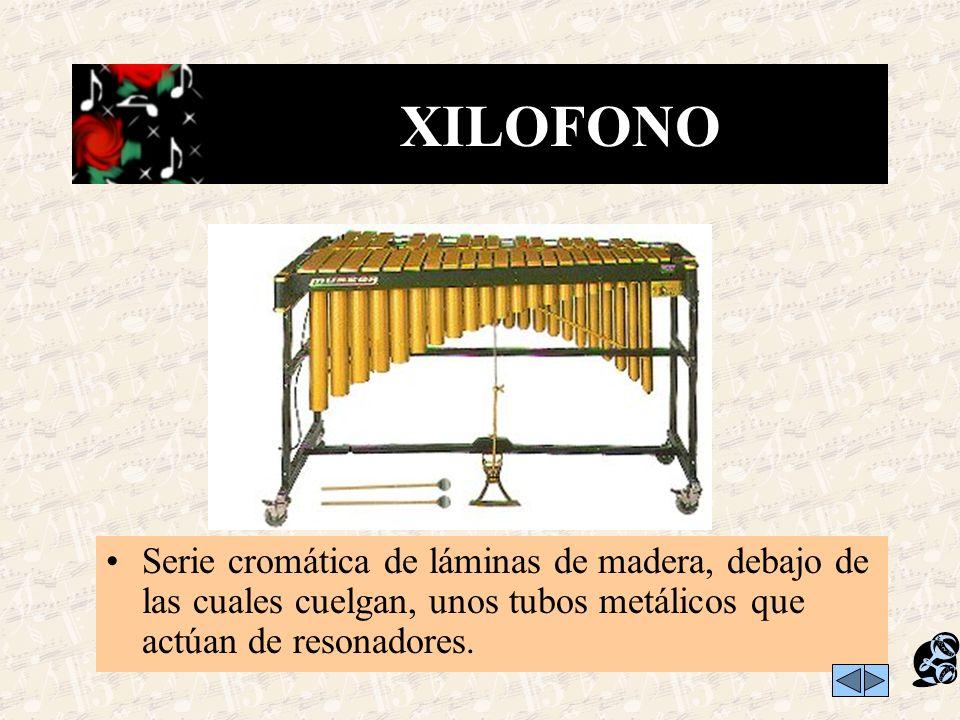 Son los instrumentos con los que se pueden tocar varias notas musicales de diferentes alturas. Cada nota puede representarse en el pentagrama. Los más