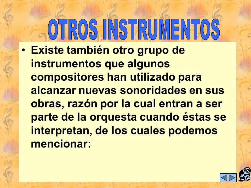 Nos queda por nombrar dos instrumentos que no están incluidos de manera directa en grupos o familias, pero que son invitados permanentes a este mundo