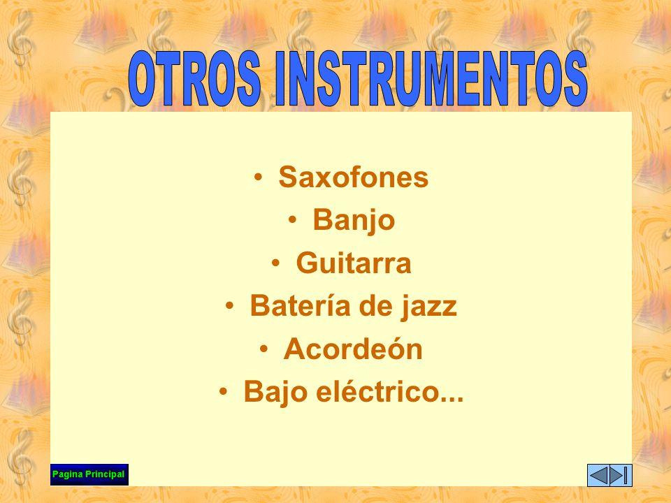 Existe también otro grupo de instrumentos que algunos compositores han utilizado para alcanzar nuevas sonoridades en sus obras, razón por la cual entr