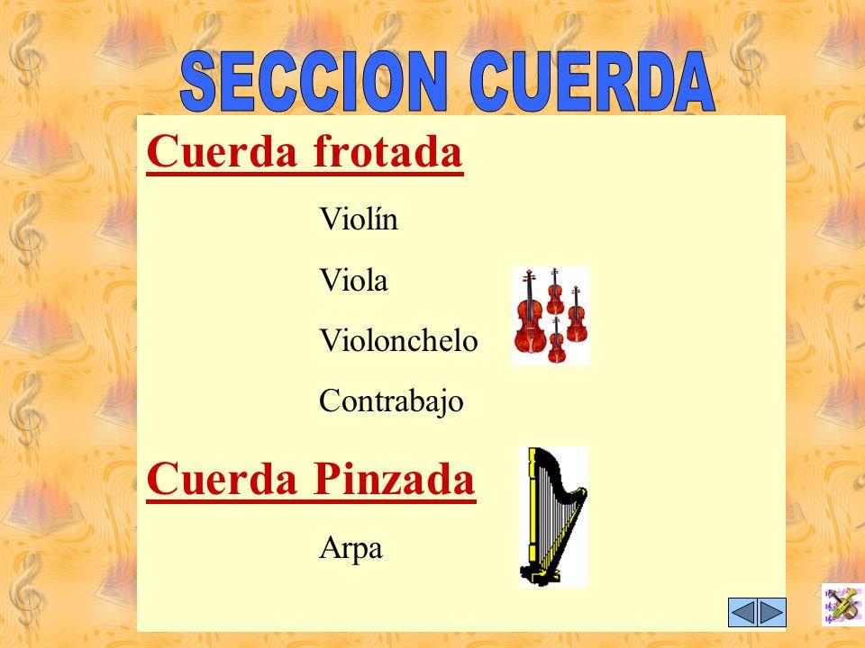 SECCIÓN CUERDA Todas las secciones de la orquesta están lideradas por un Jefe o Principal de grupo a la vez cuenta con el apoyo de un Asistente. De to
