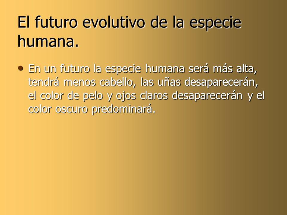 El futuro evolutivo de la especie humana. En un futuro la especie humana será más alta, tendrá menos cabello, las uñas desaparecerán, el color de pelo
