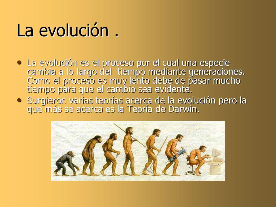 La evolución. La evolución es el proceso por el cual una especie cambia a lo largo del tiempo mediante generaciones. Como el proceso es muy lento debe