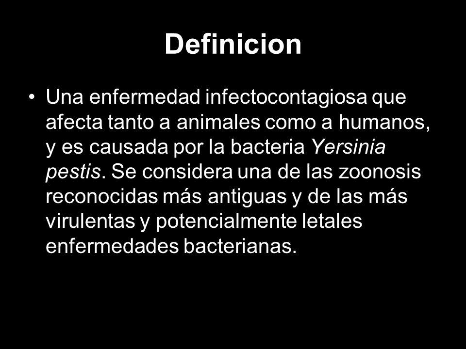 Definicion Una enfermedad infectocontagiosa que afecta tanto a animales como a humanos, y es causada por la bacteria Yersinia pestis. Se considera una
