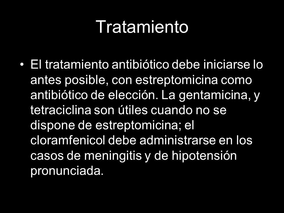 Tratamiento El tratamiento antibiótico debe iniciarse lo antes posible, con estreptomicina como antibiótico de elección. La gentamicina, y tetraciclin