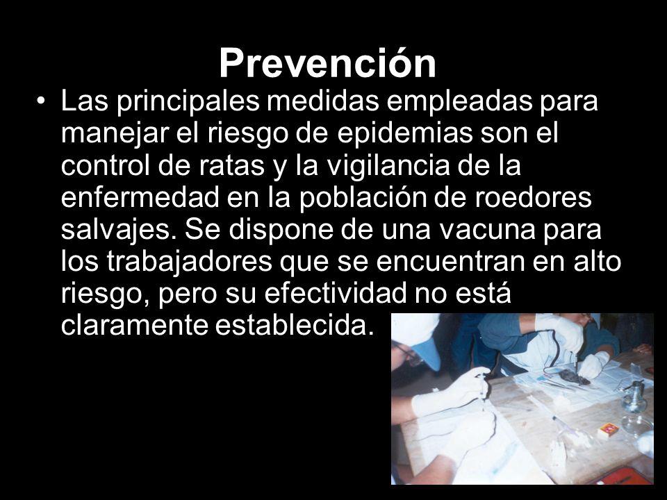 Prevención Las principales medidas empleadas para manejar el riesgo de epidemias son el control de ratas y la vigilancia de la enfermedad en la poblac