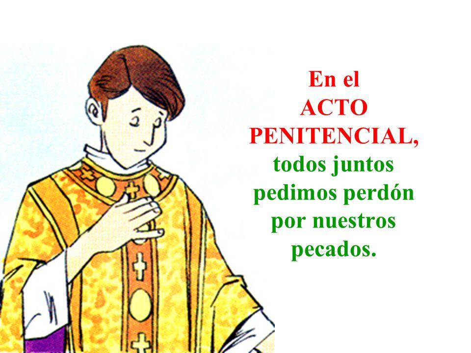 En el ACTO PENITENCIAL, todos juntos pedimos perdón por nuestros pecados.