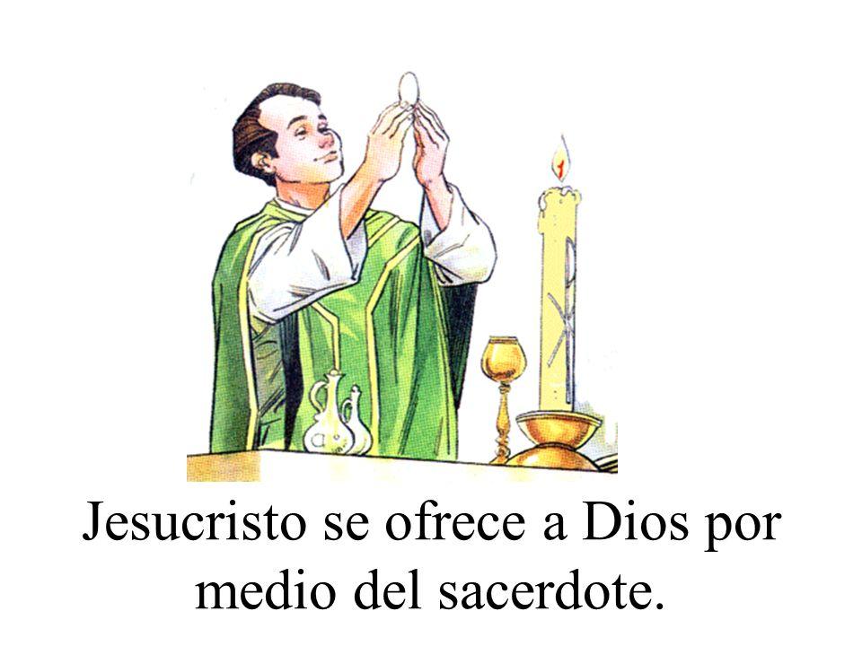 Jesucristo se ofrece a Dios por medio del sacerdote.