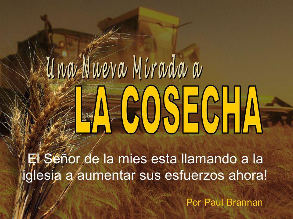 ¡…PERO HAY GRAN ESCASEZ DE OBREROS DISPONIBLES.