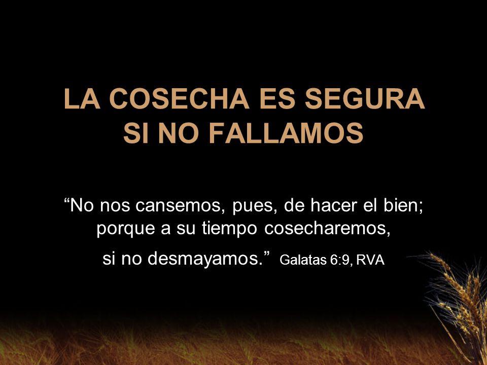 LA COSECHA ES SEGURA SI NO FALLAMOS No nos cansemos, pues, de hacer el bien; porque a su tiempo cosecharemos, si no desmayamos. Galatas 6:9, RVA