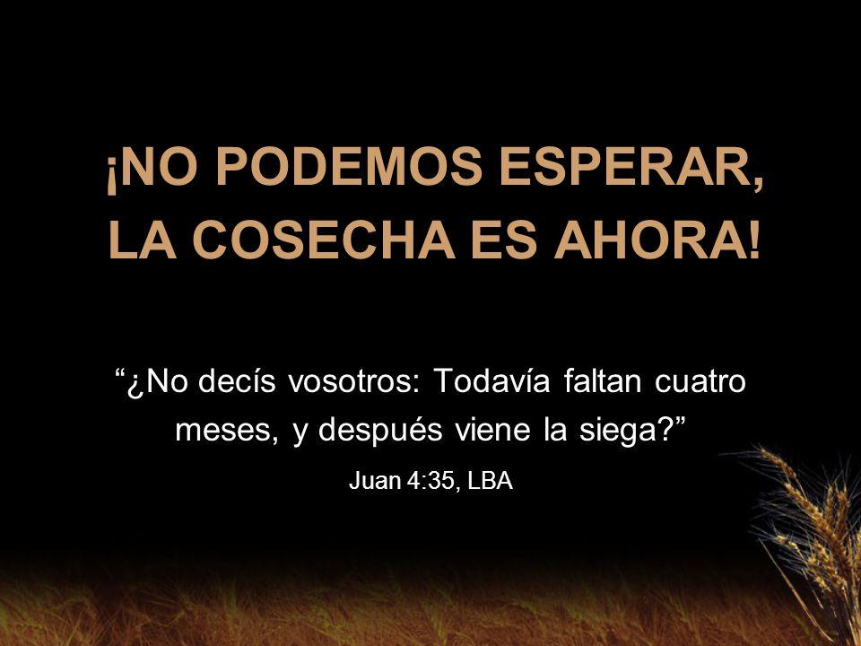 DEBEMOS ORAR QUE OTROS SE PRESENTEN PARA TRABAJAR CON NOSOTROS EN LA COSECHA Por tanto, rogad al Señor de la mies que envíe obreros a su mies.