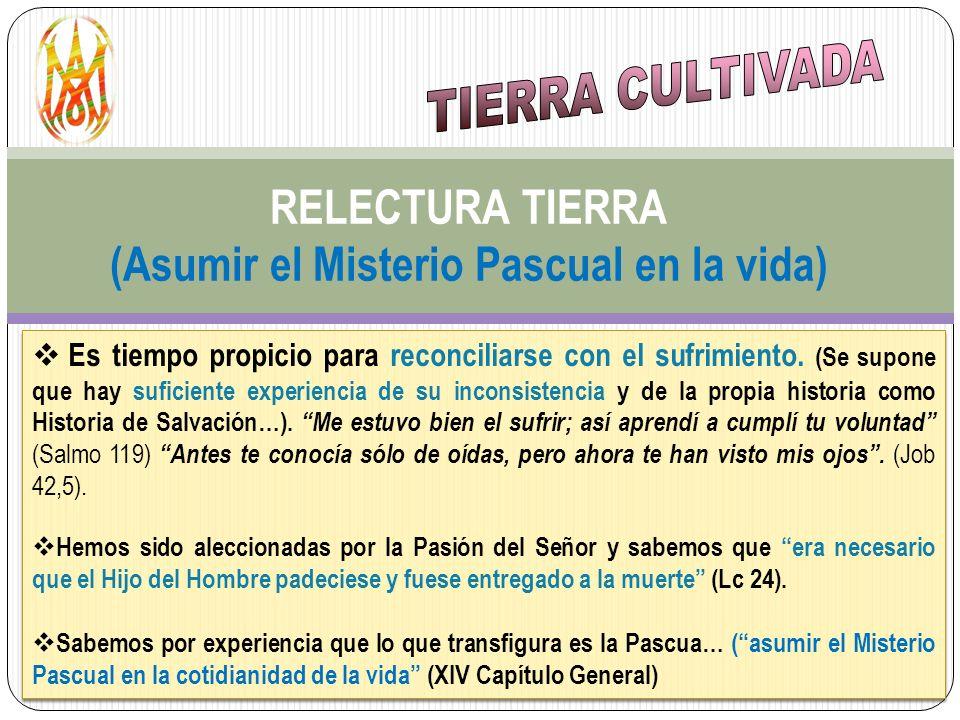 RELECTURA TIERRA (Asumir el Misterio Pascual en la vida) Es tiempo propicio para reconciliarse con el sufrimiento. (Se supone que hay suficiente exper