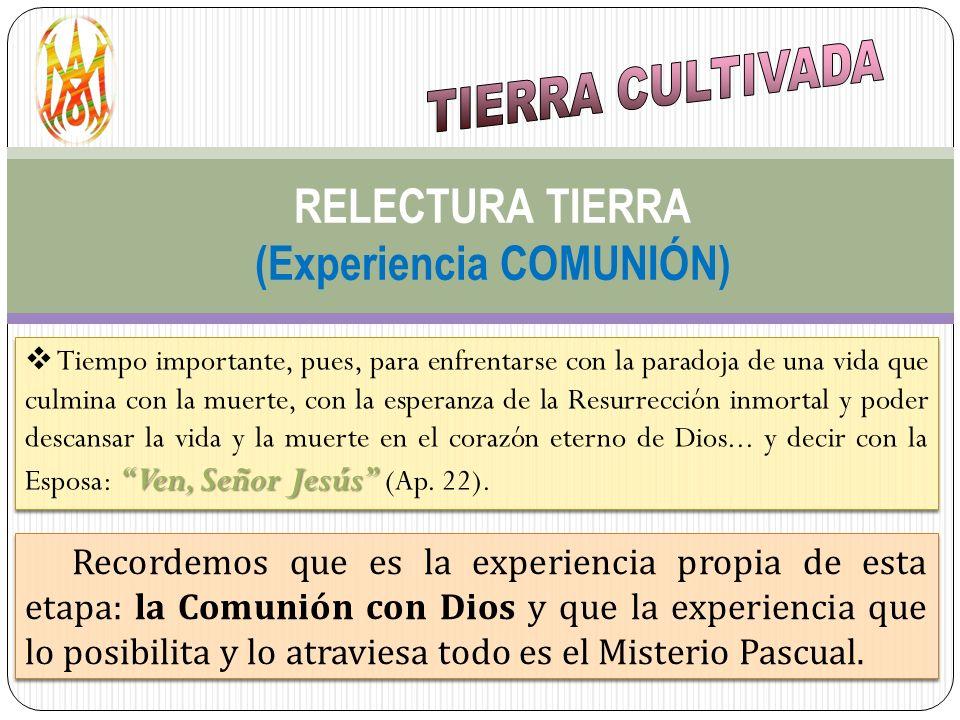 RELECTURA TIERRA (Experiencia COMUNIÓN) Ven, Señor Jesús Tiempo importante, pues, para enfrentarse con la paradoja de una vida que culmina con la muer