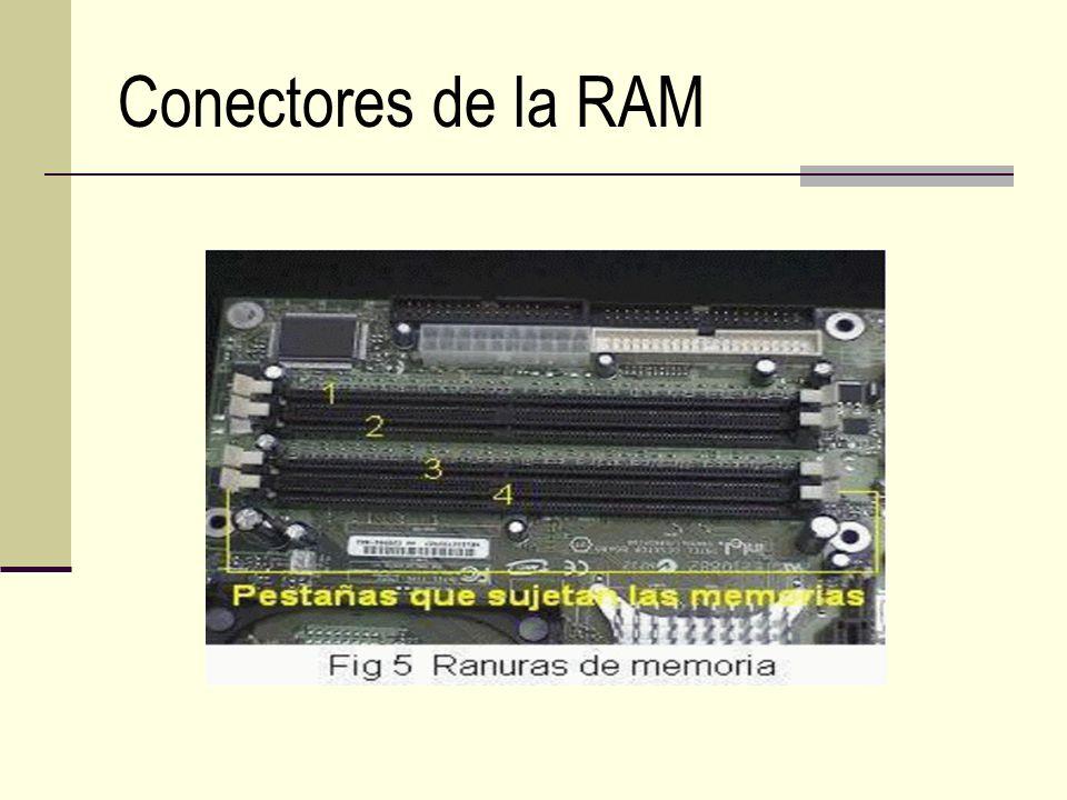 Conectores de la RAM
