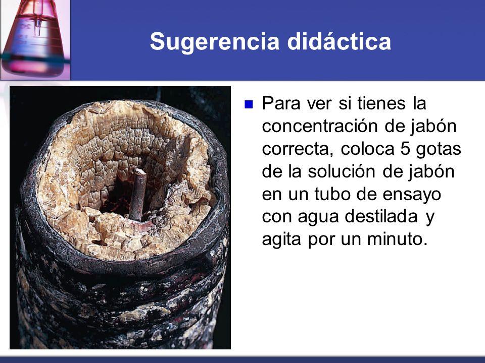 Sugerencia didáctica Para ver si tienes la concentración de jabón correcta, coloca 5 gotas de la solución de jabón en un tubo de ensayo con agua desti