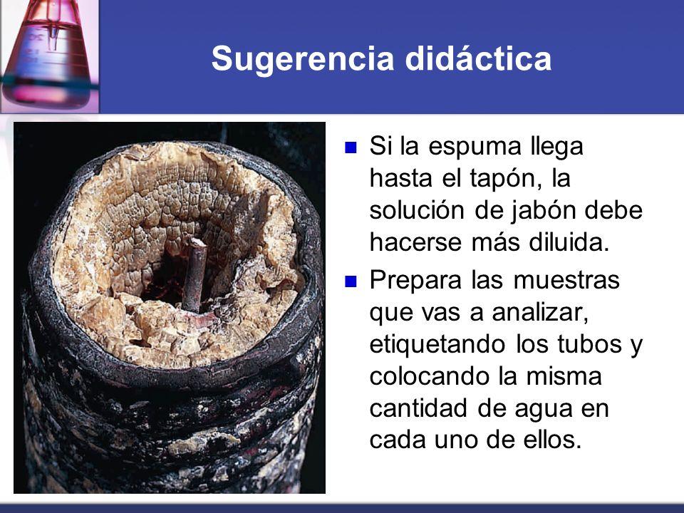 Sugerencia didáctica Si la espuma llega hasta el tapón, la solución de jabón debe hacerse más diluida. Prepara las muestras que vas a analizar, etique