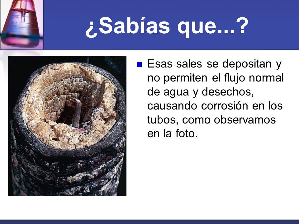 ¿Sabías que...? Esas sales se depositan y no permiten el flujo normal de agua y desechos, causando corrosión en los tubos, como observamos en la foto.
