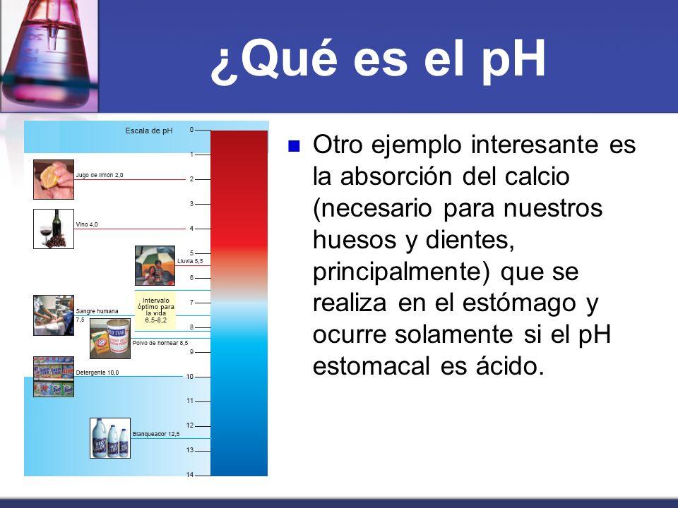 ¿Qué es el pH Otro ejemplo interesante es la absorción del calcio (necesario para nuestros huesos y dientes, principalmente) que se realiza en el estó