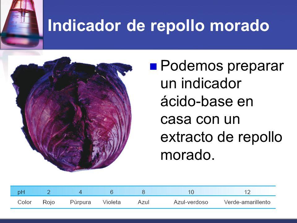 Podemos preparar un indicador ácido-base en casa con un extracto de repollo morado. Indicador de repollo morado