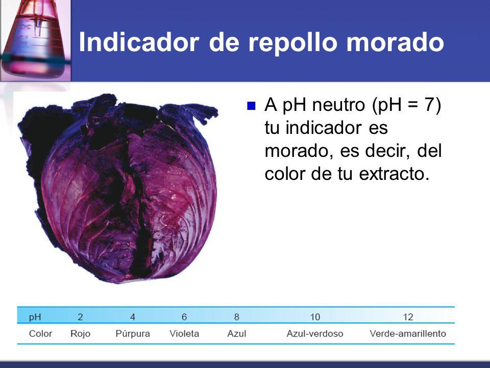 A pH neutro (pH = 7) tu indicador es morado, es decir, del color de tu extracto. Indicador de repollo morado