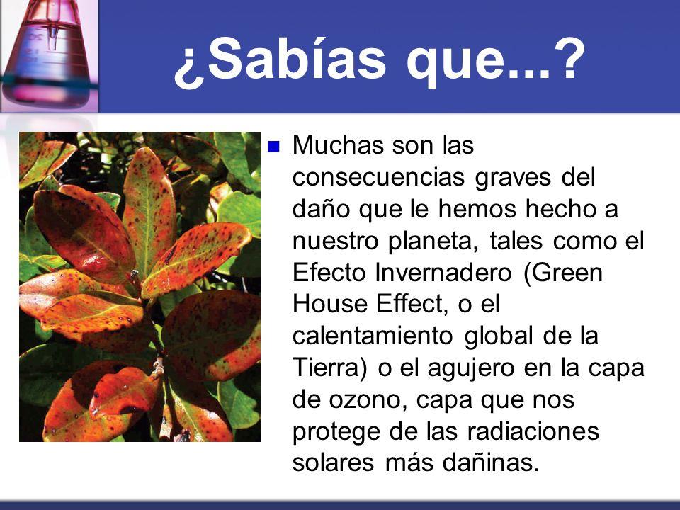 ¿Sabías que...? Muchas son las consecuencias graves del daño que le hemos hecho a nuestro planeta, tales como el Efecto Invernadero (Green House Effec