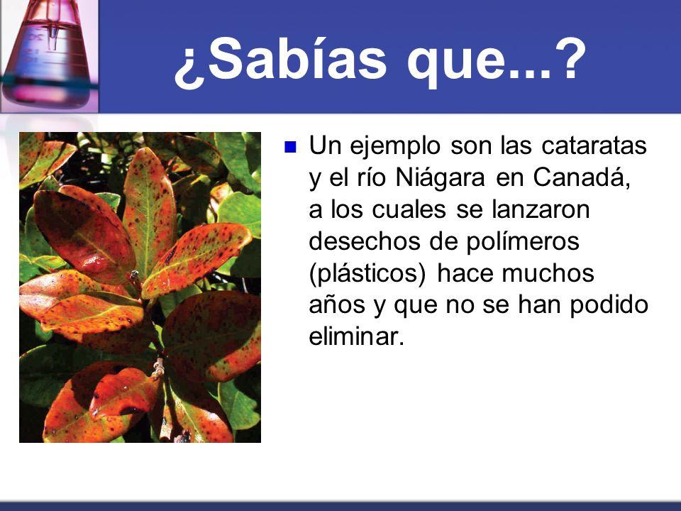 ¿Sabías que...? Un ejemplo son las cataratas y el río Niágara en Canadá, a los cuales se lanzaron desechos de polímeros (plásticos) hace muchos años y