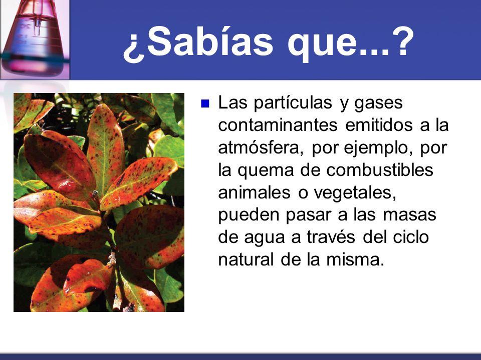 ¿Sabías que...? Las partículas y gases contaminantes emitidos a la atmósfera, por ejemplo, por la quema de combustibles animales o vegetales, pueden p