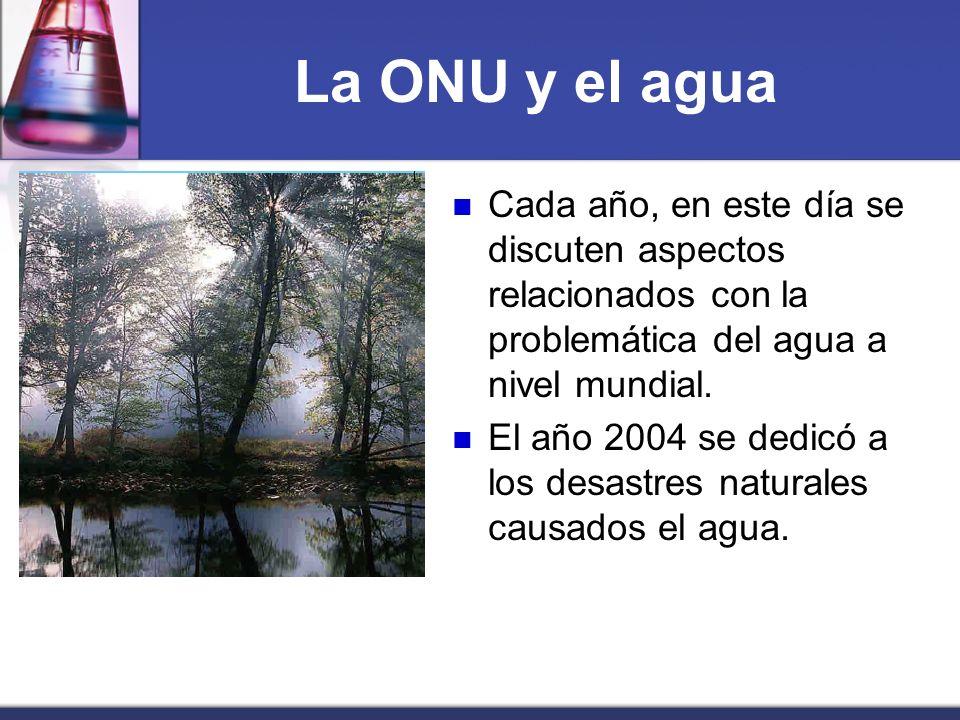 La ONU y el agua Cada año, en este día se discuten aspectos relacionados con la problemática del agua a nivel mundial. El año 2004 se dedicó a los des