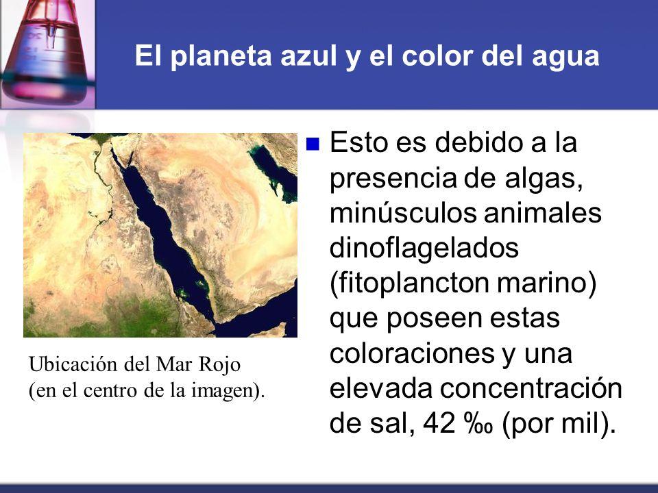 El planeta azul y el color del agua Esto es debido a la presencia de algas, minúsculos animales dinoflagelados (fitoplancton marino) que poseen estas