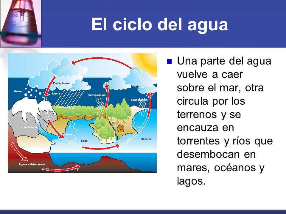 El ciclo del agua Una parte del agua vuelve a caer sobre el mar, otra circula por los terrenos y se encauza en torrentes y ríos que desembocan en mare