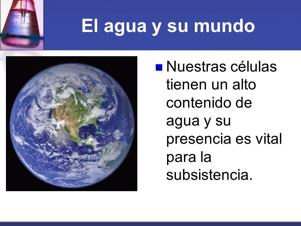 El agua y su mundo Es éste un líquido de gran importancia en nuestra vida y tiene propiedades especiales que iremos descubriendo en este capítulo.