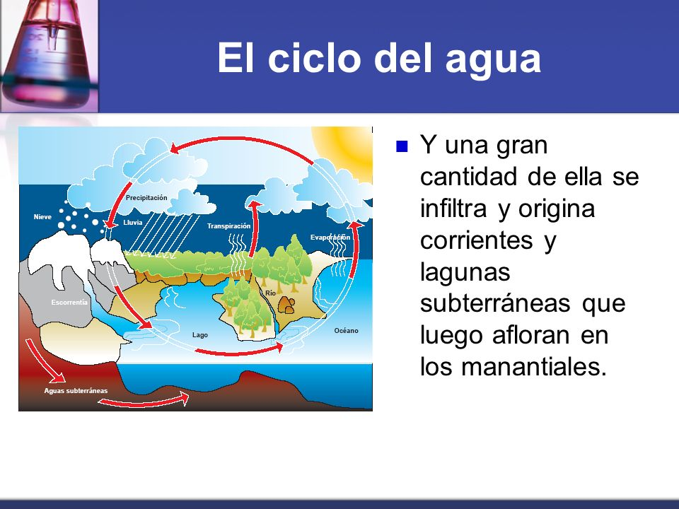 El ciclo del agua Y una gran cantidad de ella se infiltra y origina corrientes y lagunas subterráneas que luego afloran en los manantiales.