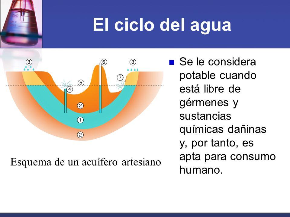 El ciclo del agua Se le considera potable cuando está libre de gérmenes y sustancias químicas dañinas y, por tanto, es apta para consumo humano. Esque