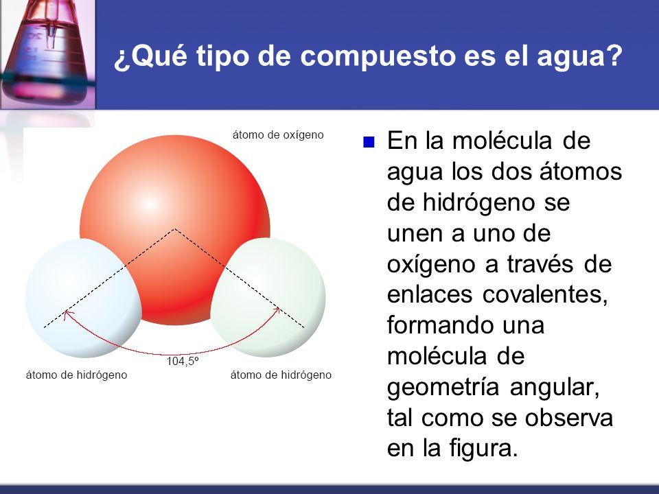 ¿Qué tipo de compuesto es el agua? En la molécula de agua los dos átomos de hidrógeno se unen a uno de oxígeno a través de enlaces covalentes, formand